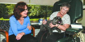 Therapy Dog Brings Joy, Comfort to Cancer Patients and others