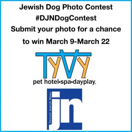 Jewish Dog Photo Contest #DJNDogContest Submit your photo for a chance to win March 9 - March 22. Sponsored by TyVy Pet Hotel and the Detroit Jewish News.