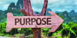 Family Counseling: Finding Your Life's Purpose