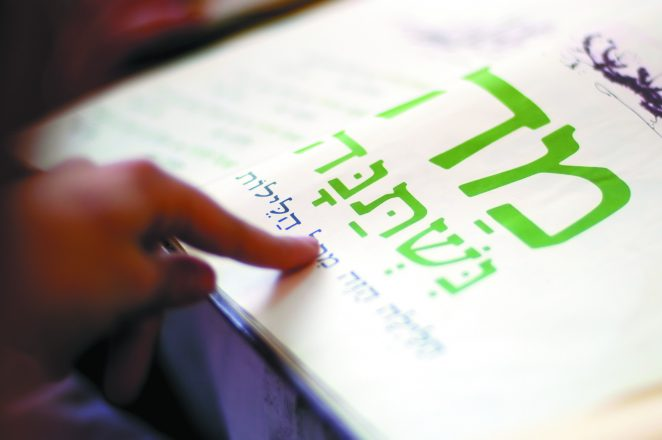 A woman reads the Haggadah (traditional text) during blessings for the Jewish holiday of Passover Dinner