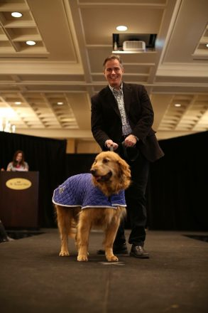 A man and a dog walk down a runway at Detroit Dog Rescue's Canines and Couture fundraising event.