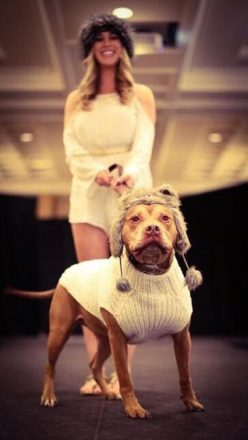 A dog and a woman walk down a catwalk modeling matching sweaters and furry hats at Detroit Dog Rescue's Canines and Couture.