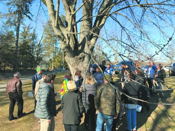 The group surrounds a maple tree that is ready to be tapped.