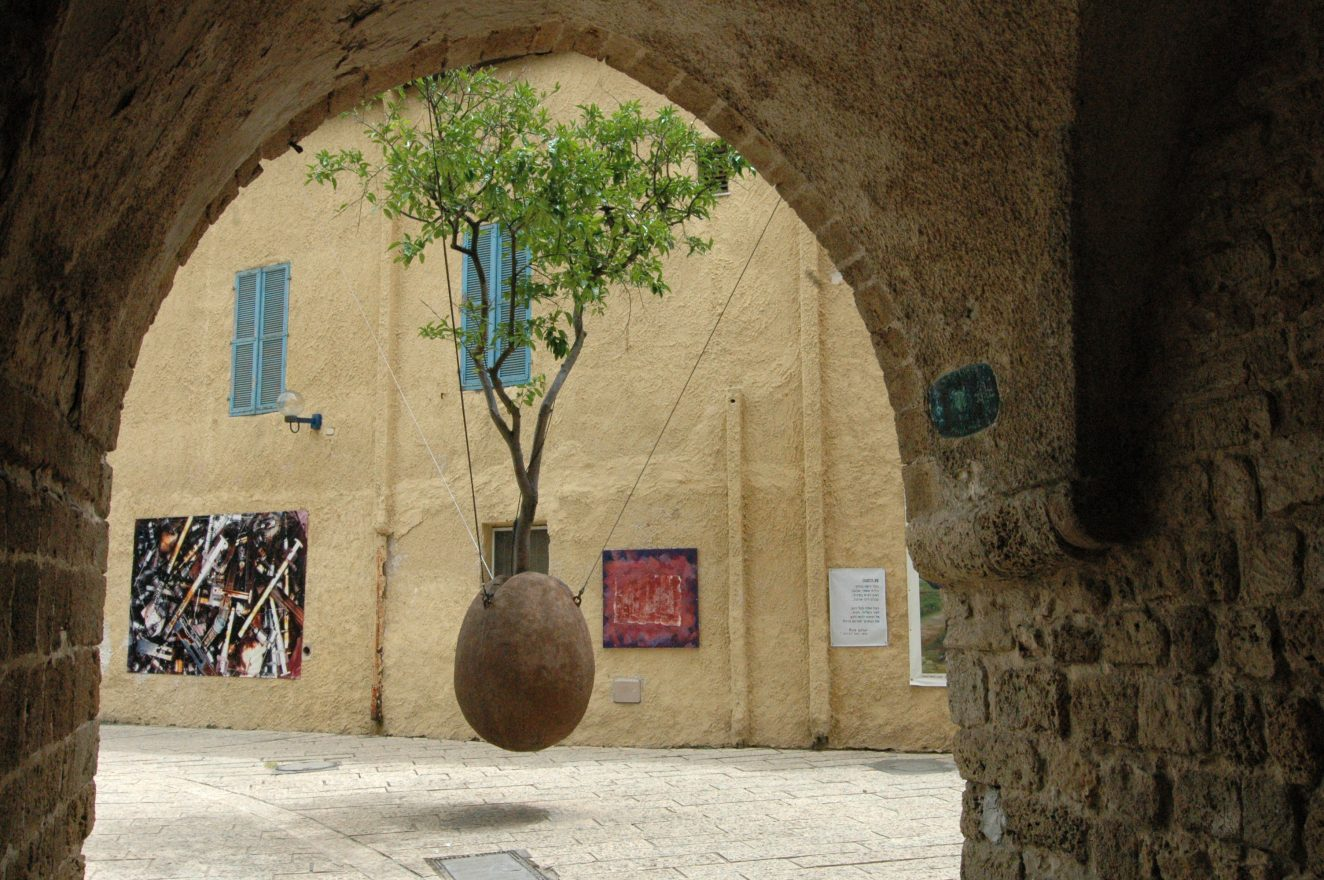 suspended tree in Jaffa, Israel from Blogs From Israel
