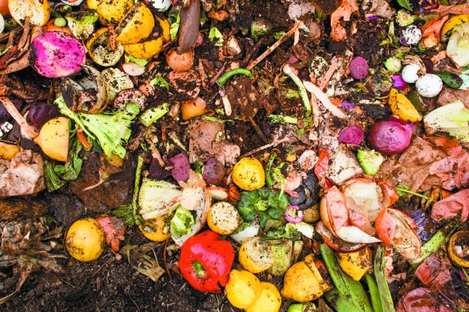 These discarded veggies will turn into black gold for gardeners.