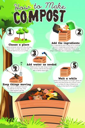 How to compost infographic.