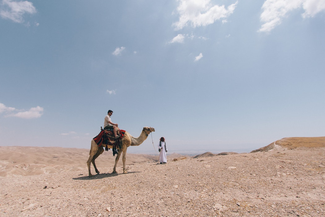 person riding a camel in Israel