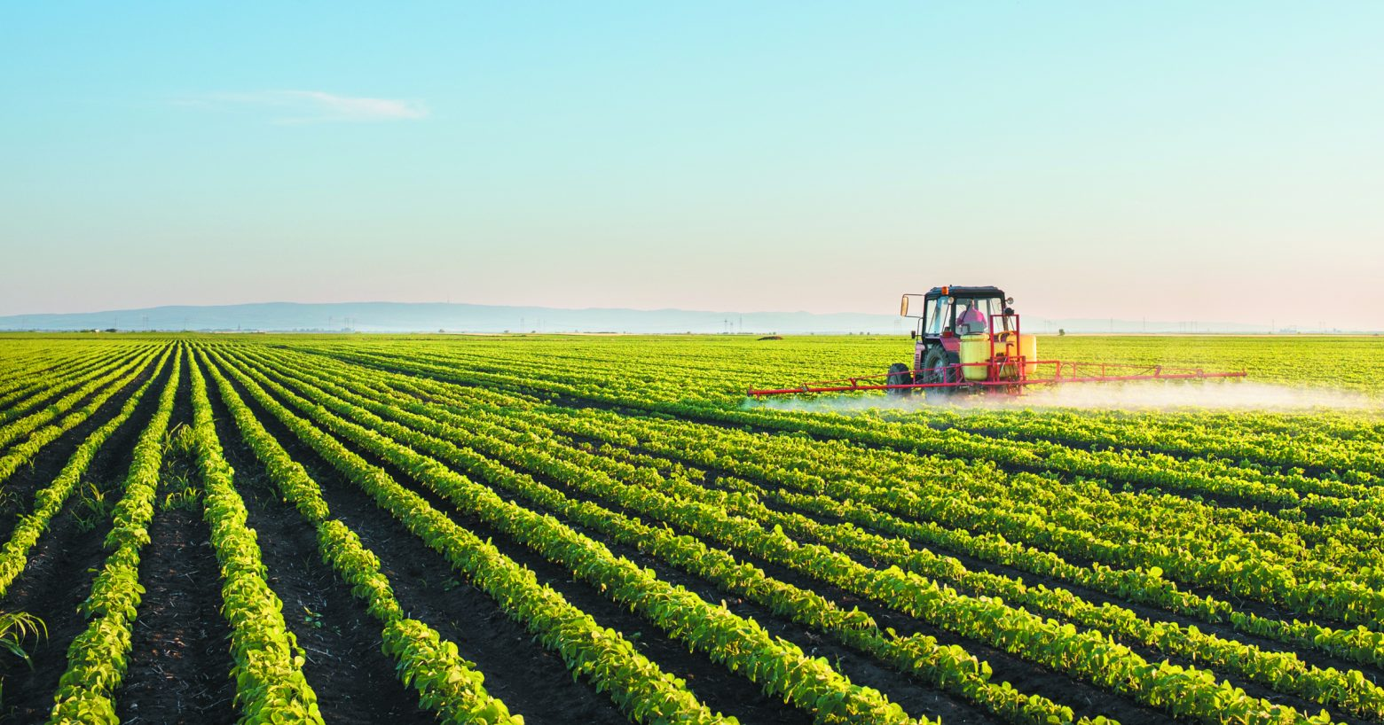 Tractor spraying soybean field at spring for the Torah Portion