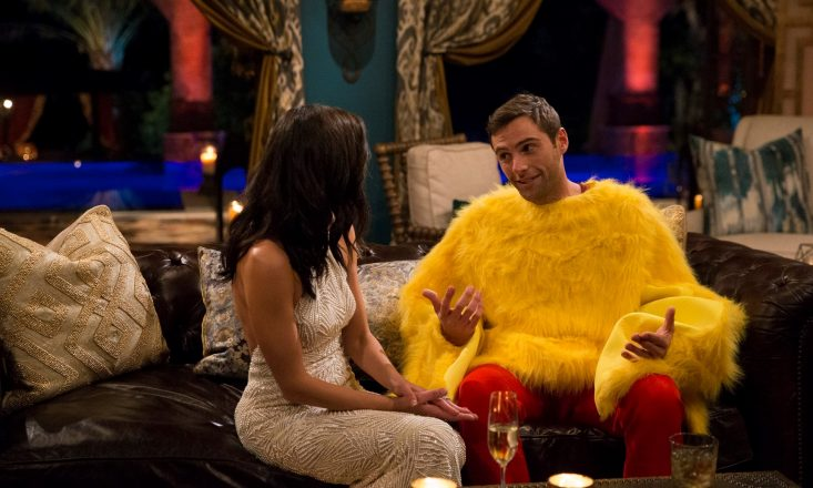 Credit: Bustle https://www.bustle.com/p/how-rich-is-david-from-the-bachelorette-the-chicken-suit-contestant-is-bringing-home-the-big-bawks-9189620