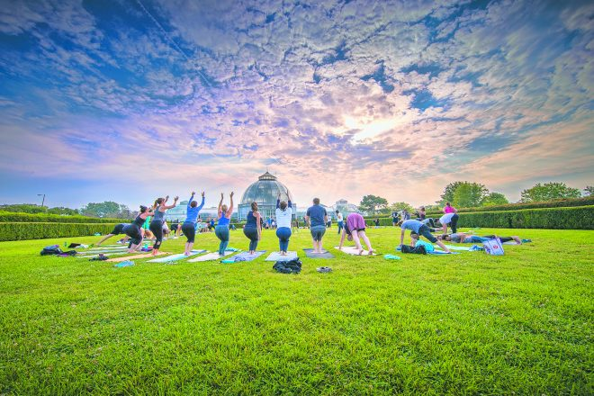 A previous yoga fundraising event on Belle Isle near the aquarium and conservatory. Photo by Leon Halip