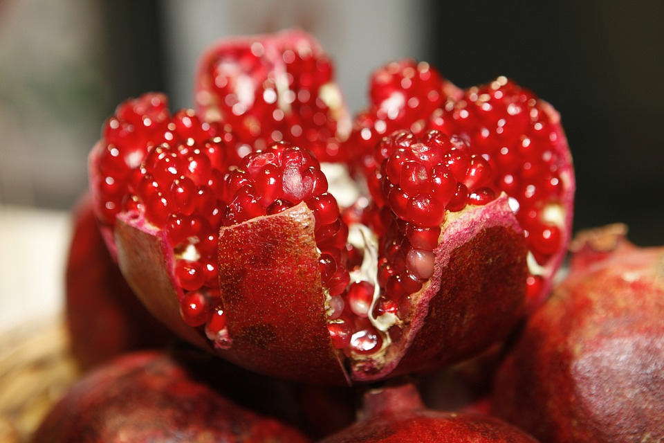 pomegranate to represent Rosh Hashanah and the Days of Awe Resource Guide and the month of Elul.