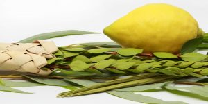 For Openers: Room For More Meanings, Especially About Sukkot