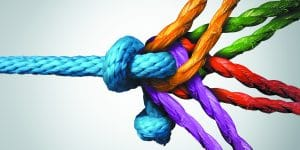 Weekly Torah Portion – We Are All In This Together