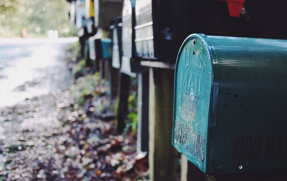 a row of mailboxes line a road with a lot of fallen leaves on it.