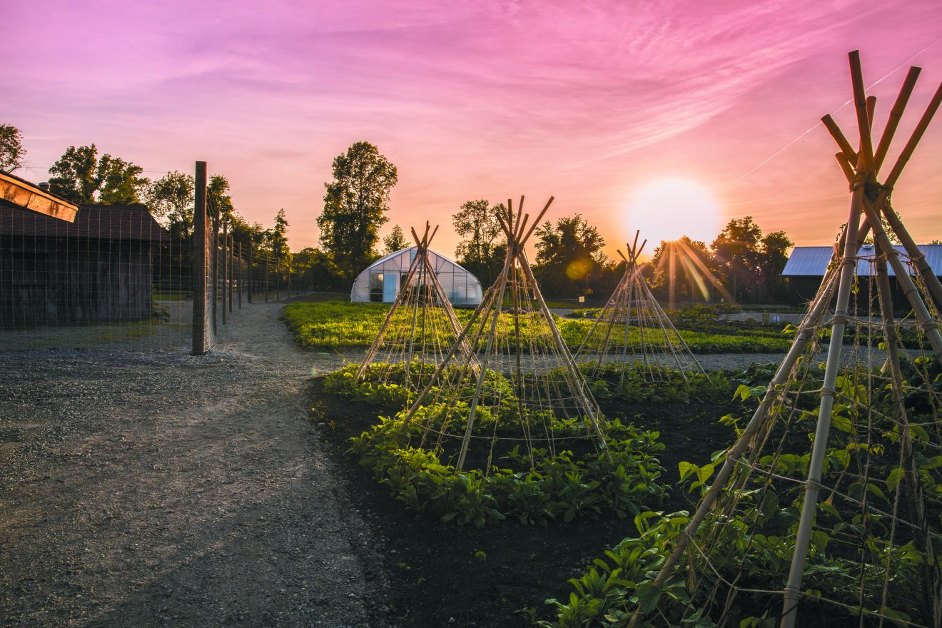 Sunset on Farber Farm at Camp Maas in Ortonville.