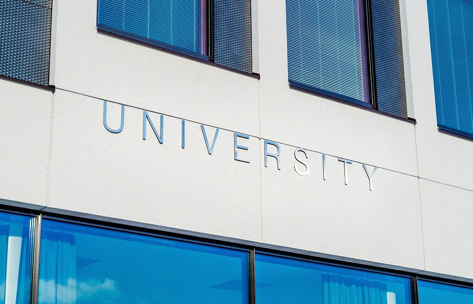 "an image of a University that just shows the word ""university"""