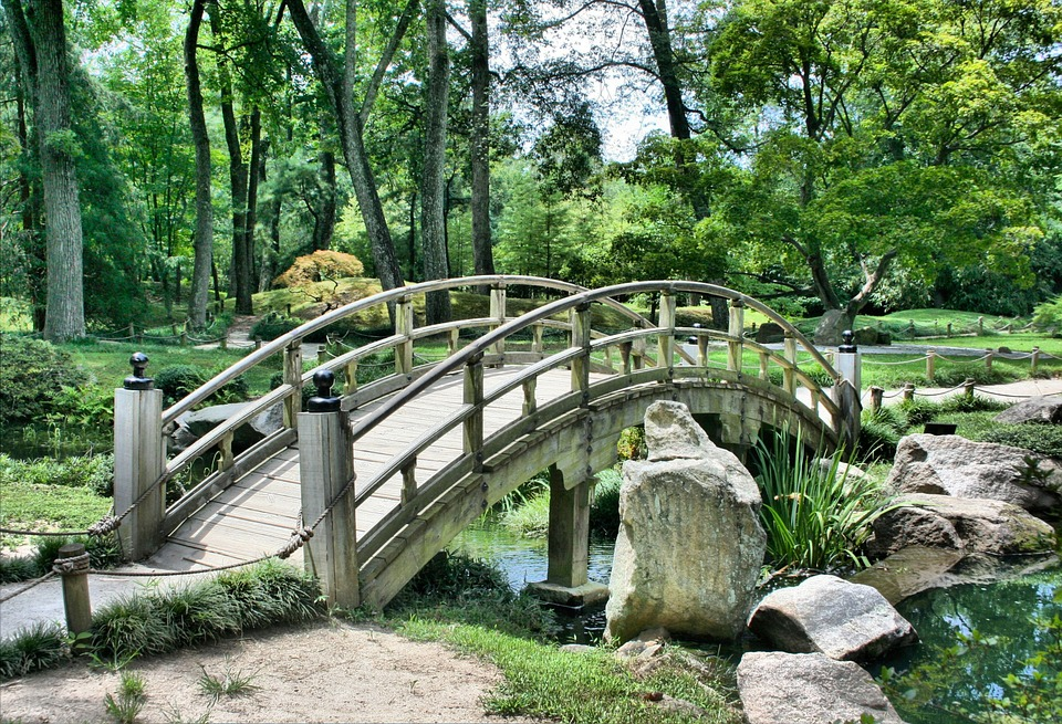 bridge over water with trees behind