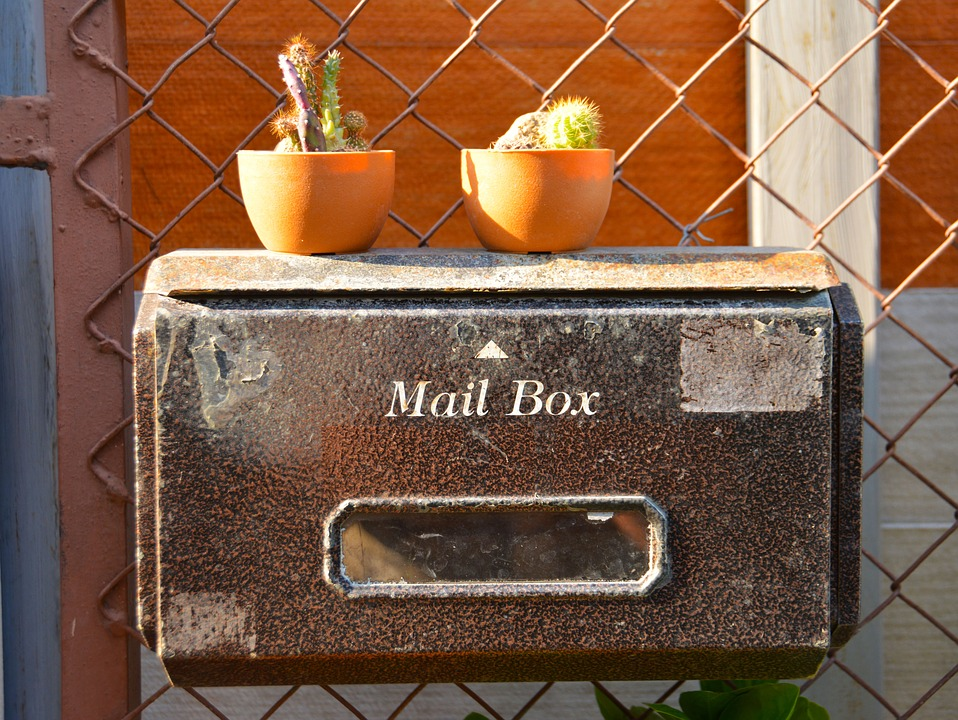 mail box with two potted cacti on top