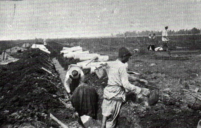 pioneers draining Petah Tikvah's swamps in 1906