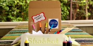 A Shalom at Home box with shabbat crafts and activities in it.