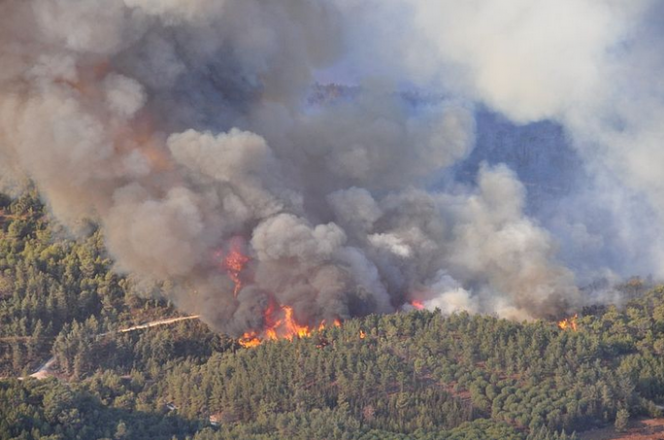 Great billows of fire and smoke from the\ Carmel forest fire in 2010.
