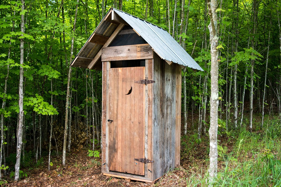 wooden outhouse in the middle of the woods with a pointed top and a crescent moon cut out in the door.
