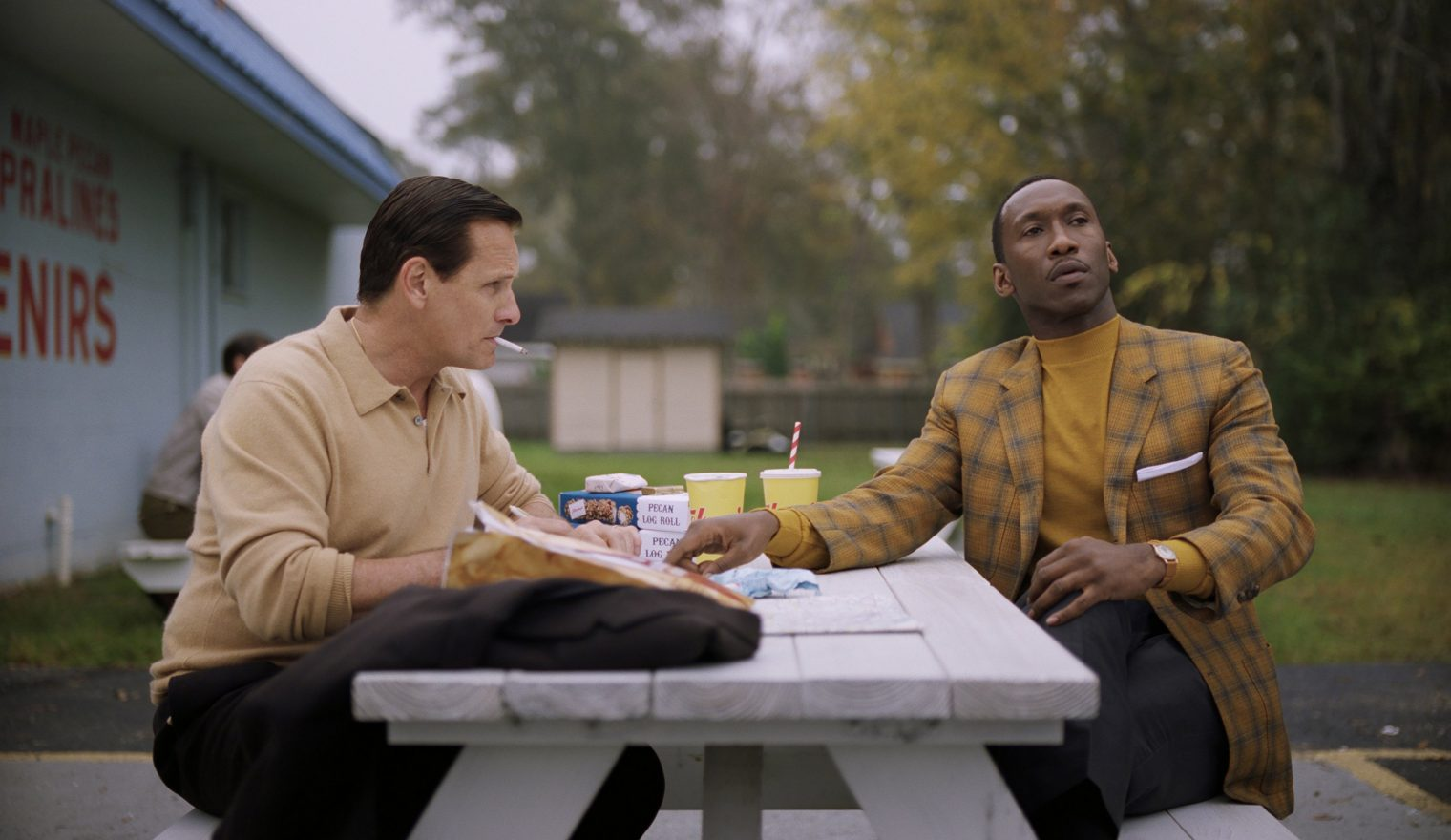 Viggo Mortensen as Tony Vallelonga and Mahershala Ali as Dr. Donald Shirley in Green Book, directed by Peter Farrelly. In this still, Viggo (a white man) sits on the left of a picnic table and Ali (a black man) sits at the right. They are both drinking fountain drinks with straws and Viggo is smoking a cigarette which hangs out of his mouth.