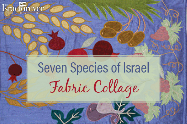 Seven_Species_of_Israel_Fabric_Collage_600x400