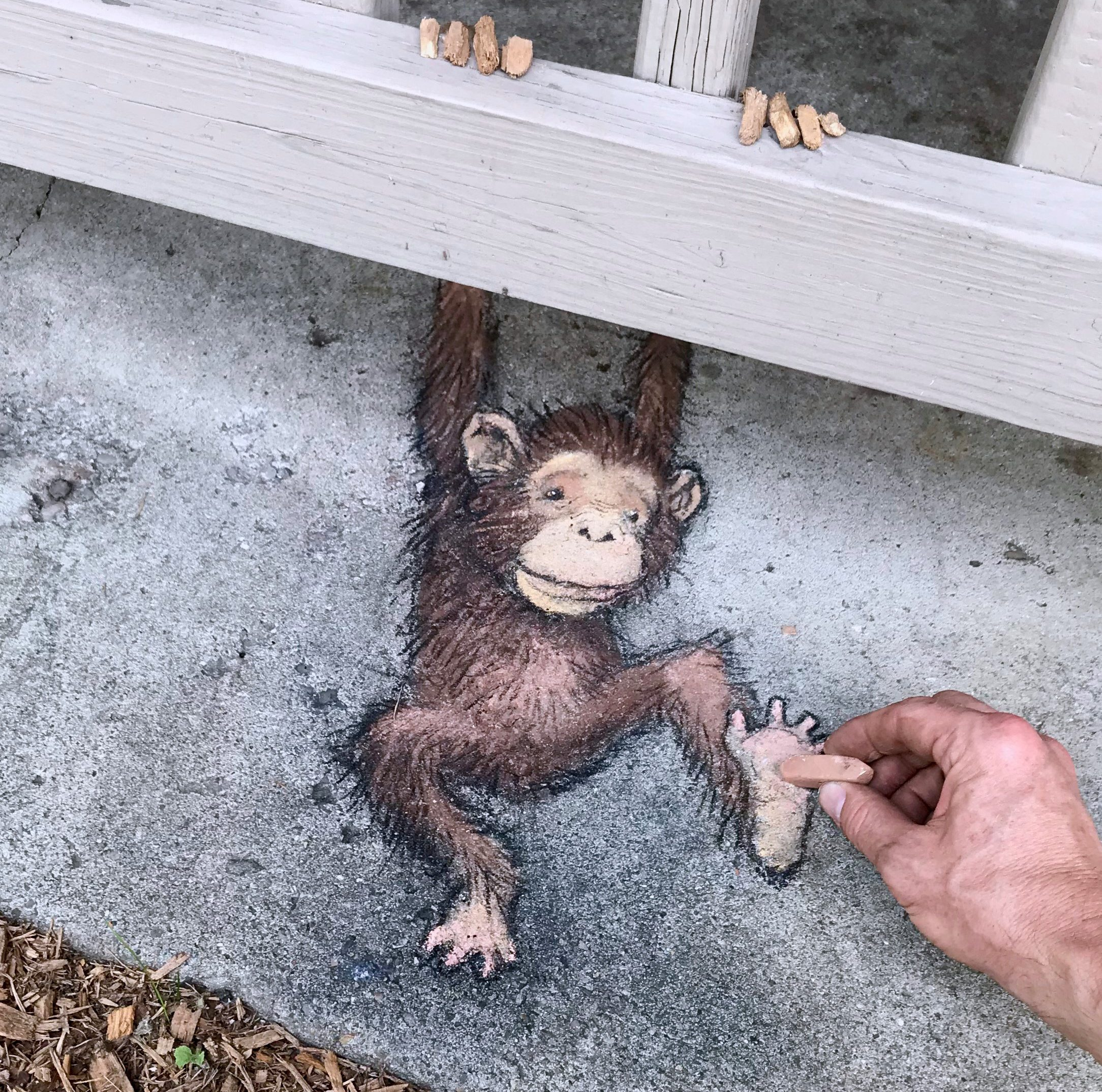 David Zinn's whimsical chalk drawings will be featured at the Detroit Zoo's GreenFest.