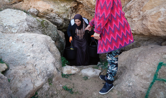 Tencer and IfNotNow traveled to restore Palestinian spring