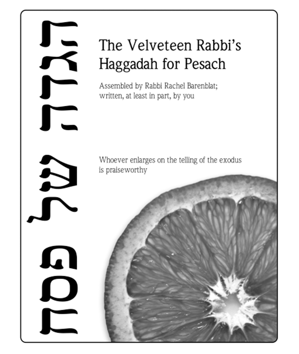 The Velveteen Rabbi's Passover Haggadah