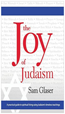 The Joy of Judaism Book Cover