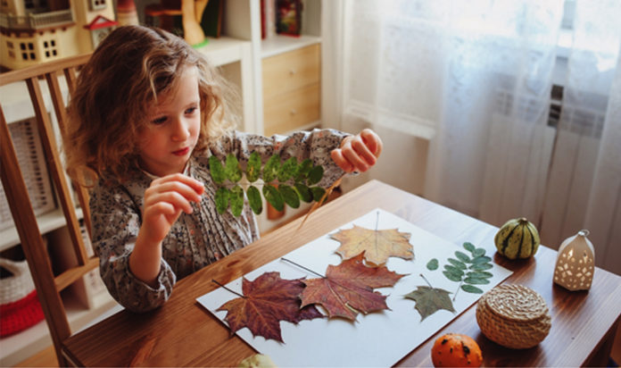 A leaf activity