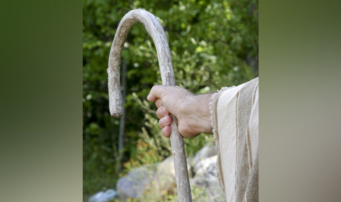 Shepherd's arm holding a staff.