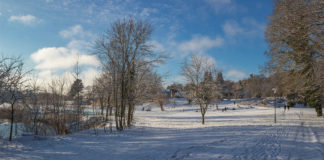 Park and Snow