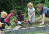 JWF provides support for Giving Gardens