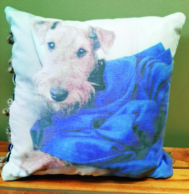 A pillow woven from the blanket of a beloved family dog.