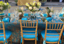 An outdoor event planned by Susan Siegal